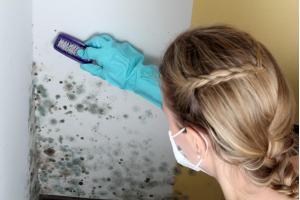 Важность вентиляции для бытовых помещений с большой влажностью, для предотвращения появления плесени и грибка